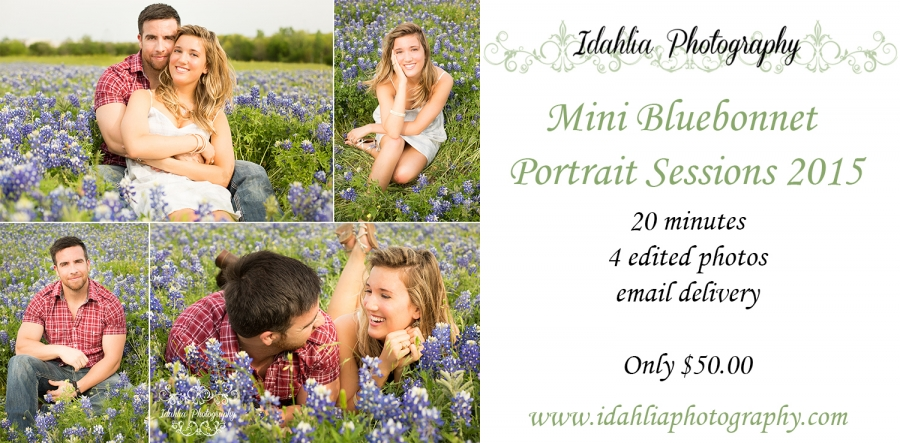 idahlia_photography_mini_bluebonnet2015